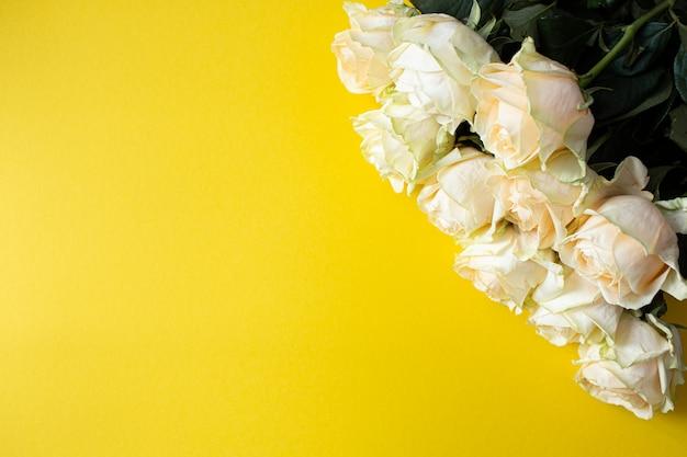 흰 장미 copyspace와 노란색 배경에 정렬입니다. 평평한 평면도, 평면도