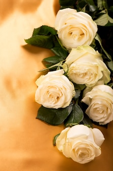 White roses on golden silk background close up