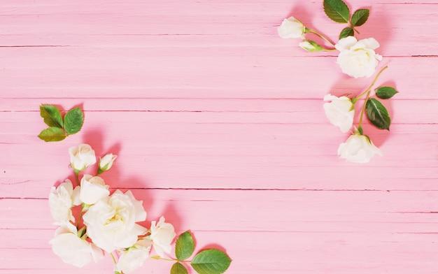 핑크 나무 배경에 흰색 장미