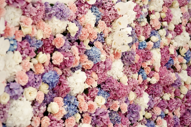White roses and pink hydrangeas make beautiful flower wall