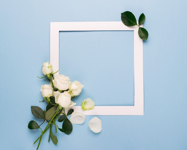 White roses and a white paper frame are decorated with fresh leaves on a blue background