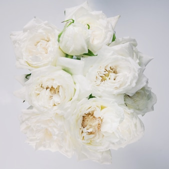 White roses with yellow stamens