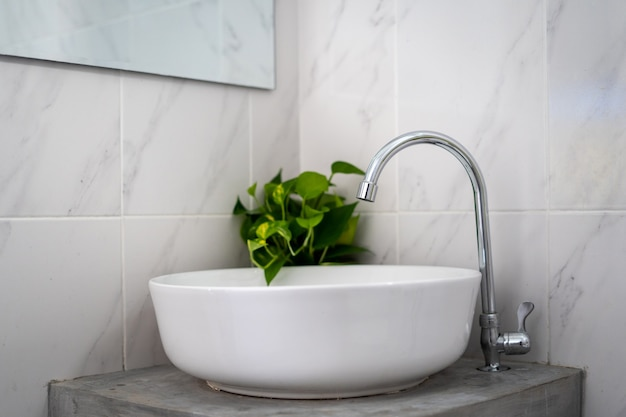 White rounded sink with silver faucet and a plant in the bathroom
