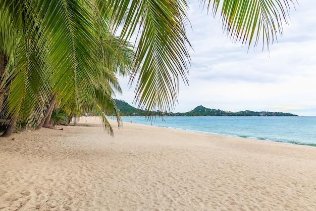 태국 코사무이 라마이 해변의 하얀 모래. covid는 관광객이 바다를 완전한 생태 회복, 자연 균형으로 만든 후