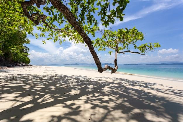 タイラノーン県カムトック島(koh-kam-tok)の日差しの中で白い砂浜。