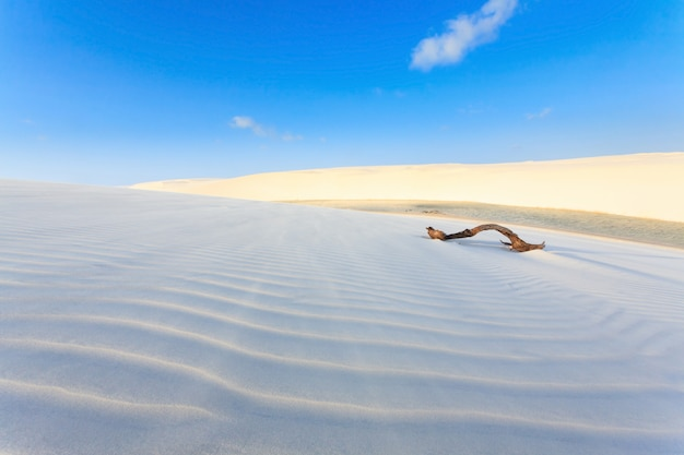 Панорама белых песчаных дюн из национального парка ленсойс маранхенс