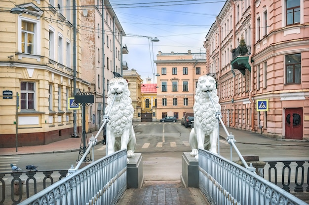 White sculptures of lions on the lion bridge over the griboyedov canal in st. petersburg on a cloudy winter day. inscription: griboyedov canal embankment