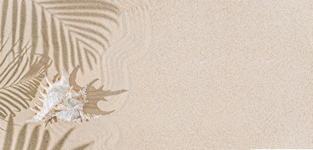 모래와 야자수 나무 그림자에 화이트 바다 포탄. 열 대 배경, 휴가 열 대 개념