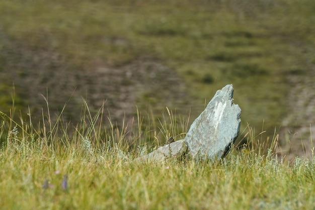 緑のボケ味の背景の草が茂った崖の端に白い鋭い石が地面から突き出ています。ぼやけて丘の上の草の鋭い石と風光明媚なミニマリストの自然の背景。ぼやけた自然の背景。