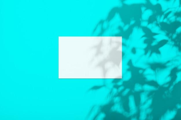 Белый лист на стене цвета пышной лавы с тенью от дерева