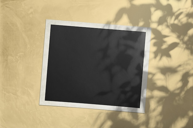 木の影と日光色の壁に白いシート