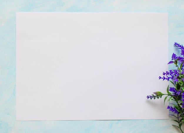 White sheet of paper on a blue background with a sprig of blue lavender place for your text