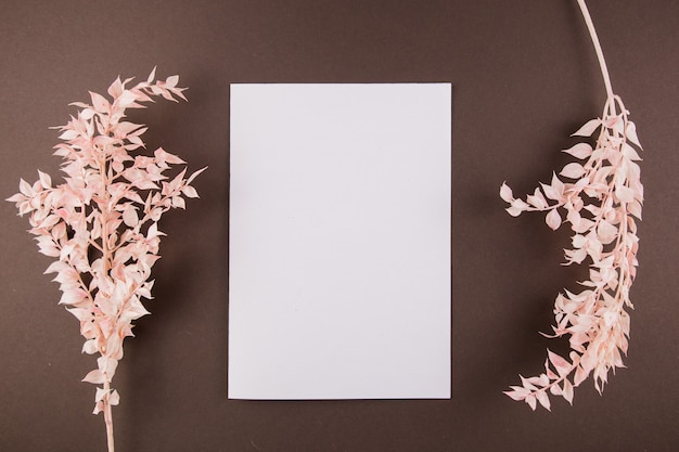 A white sheet of paper on the table with light twigs