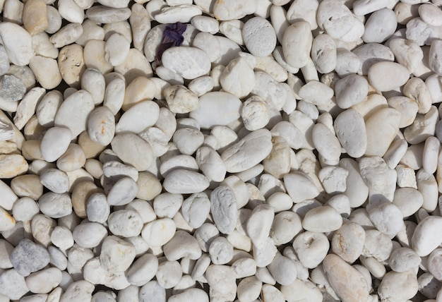 White small rock background
