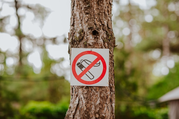 禁煙の白い小さな看板が木にあります