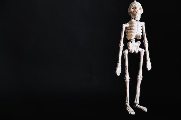Белый маленький скелет