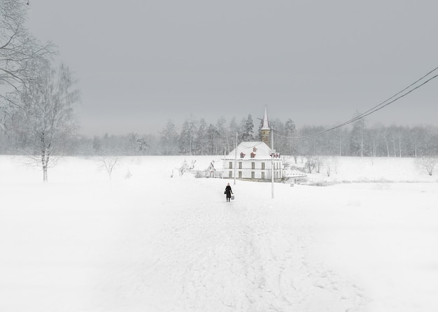 White snowy landscape with old maltese palace in beautiful natural landscape. early winter morning. gatchina. russia.