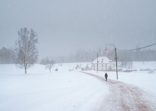 美しい自然の風景の中に古いマルタの宮殿と白い雪の風景。冬の道を歩くシルエット。ガッチナ。ロシア。