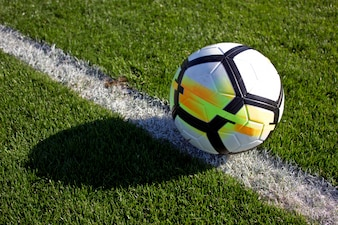 White soccer ball in the gate on a green grassy football field