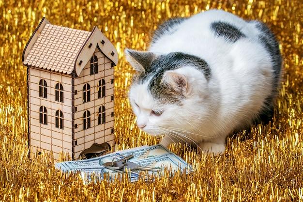 Белый пятнистый кот сидит возле игрушечного деревянного домика с ключами и долларами