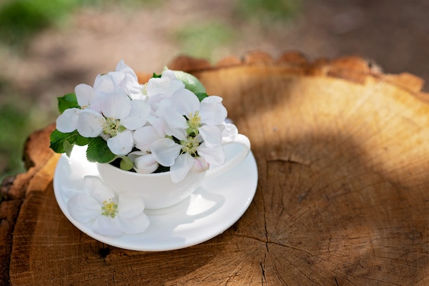 White spring apple blossoms blooming flowers in a coffee cup on a natural wooden background. spring summer concept. copy space.