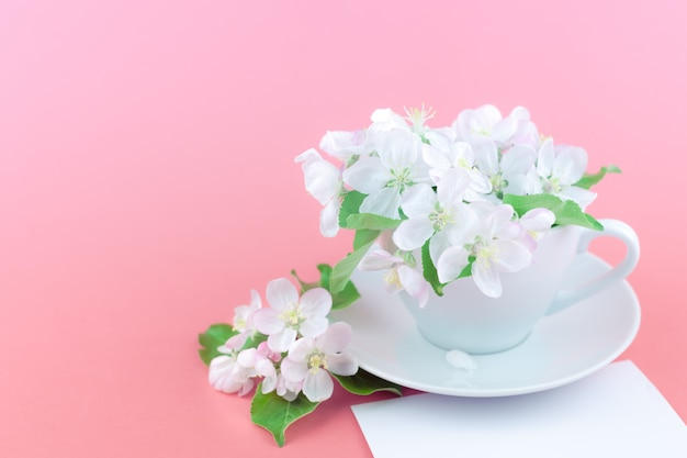 White spring apple tree blooming flowers in a cup