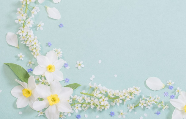 White spring flowers on paper background