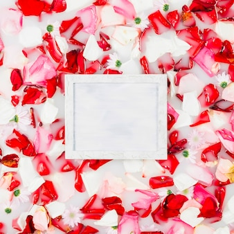 White square frame surrounded by flower petals