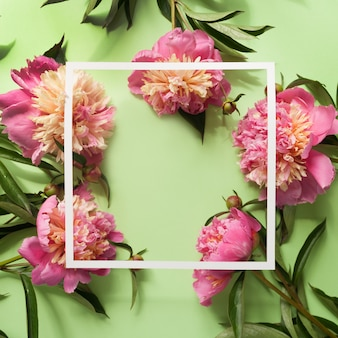 White square frame with pink peonies on green background