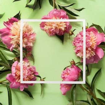 Белая квадратная рамка с розовыми пионами на зеленом фоне