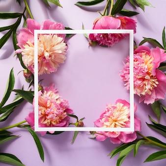 Белая квадратная рамка с розовыми пионами на фиолетовом фоне