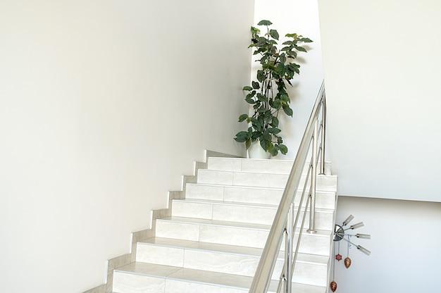 建物の白い階段。敷地内の緑の花。モダンでスタイリッシュなデザイン。