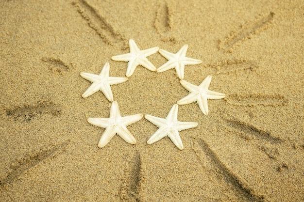 Белая морская звезда рисует солнце на песке. солнце на песке от морских звезд. концепция отдыха, лета и путешествий.