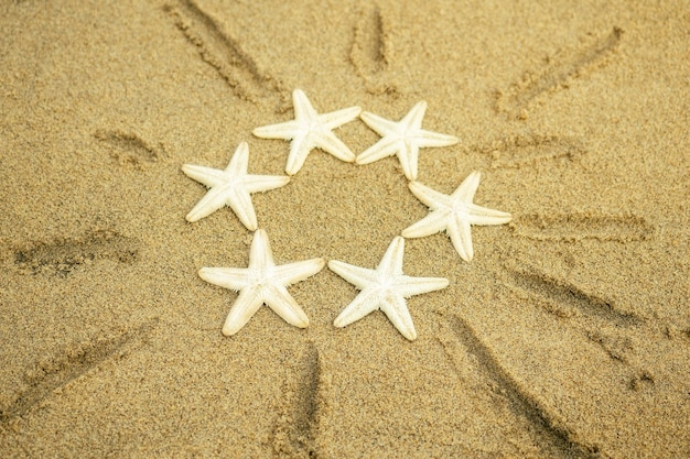 White starfish drawing sun on the sand. the sun on the sand from the sea stars. concept of vacation, summer and travel.