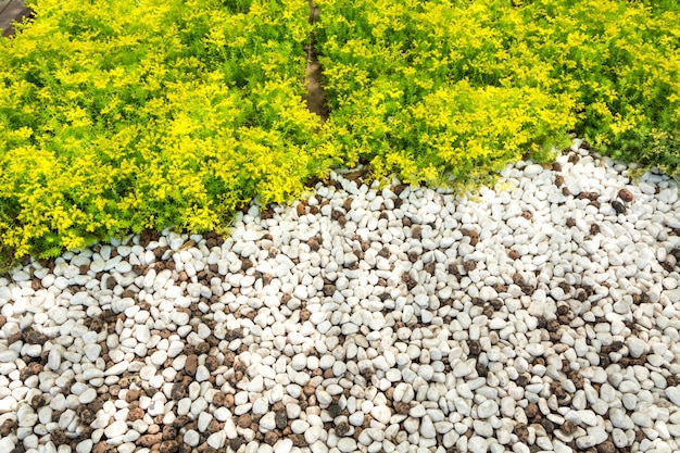 白い石の背景(テクスチャ)