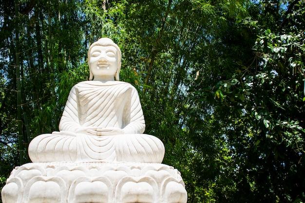 Белая каменная статуя будды на wat ratchakirihirunyaram в phitsanulok, таиланде.