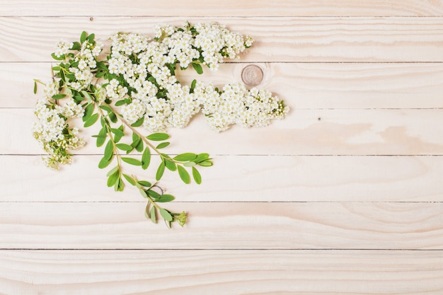 White summer flowers on wooden surface