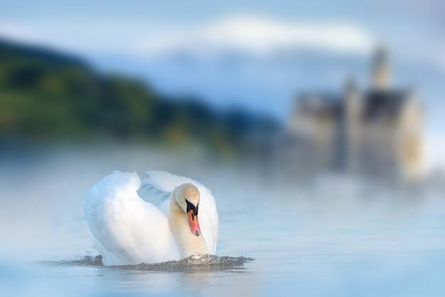 城と山の湖の白い白鳥
