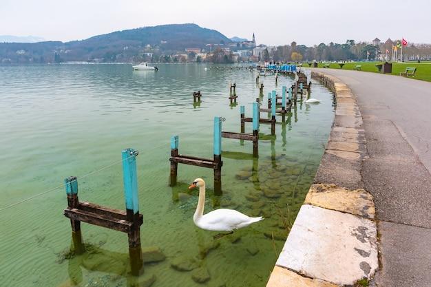 アヌシー湖と背景の旧市街、フランス、アルプスのヴェネツィア、フランスの白い白鳥