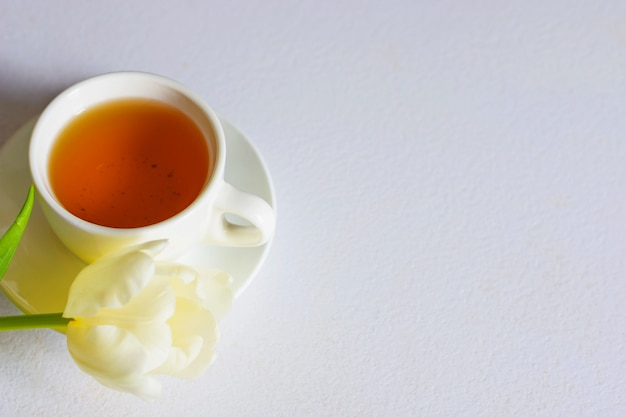 White tender spring tulips and a cup of tea on white background