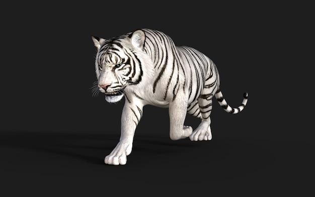 ホワイトタイガーアルビノは、クリッピングパス3dイラストで暗い背景に分離