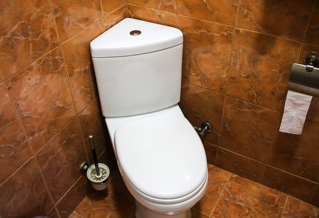 White toilet bowl. bathroom in the hotel or at home.