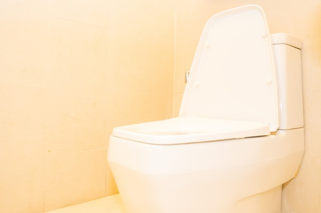 White toilet bowl seat decoration in bathroom