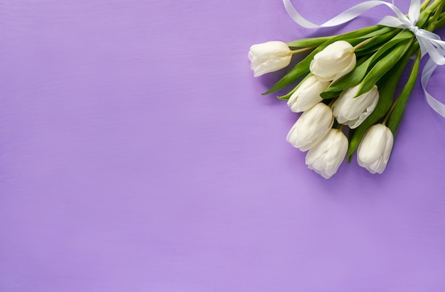 White tulips bouquet on a purple background. spring flowers background top view. banner with copy space