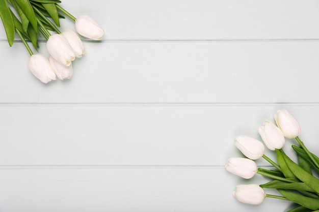 White tulips frame with copy-space