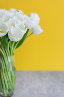 Белые тюльпаны в прозрачной вазе на цветном фоне. концепция весны.