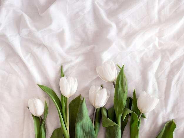 White tulips on white linen cloth. flower background. flatlay. top view. copy space
