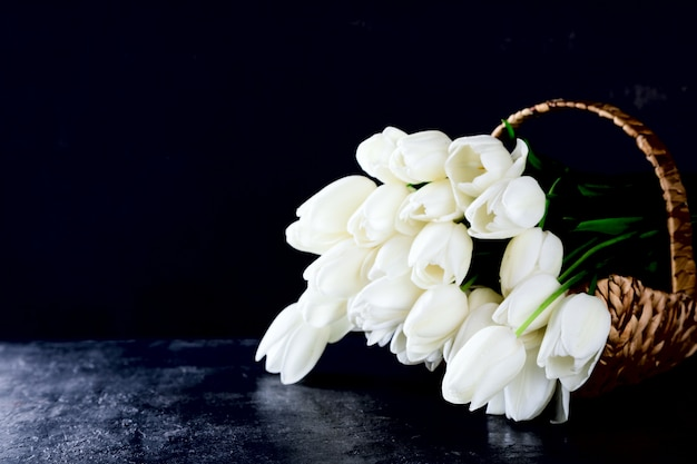 White tulips