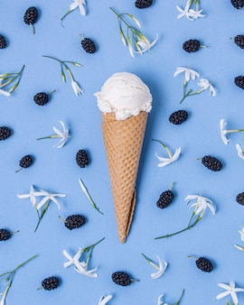 White vanilla ice cream surrounded by blackberries and flowers