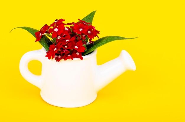 明るい背景に花が付いているじょうろの形の白い花瓶。ガーデニングのコンセプト。スタジオ写真。